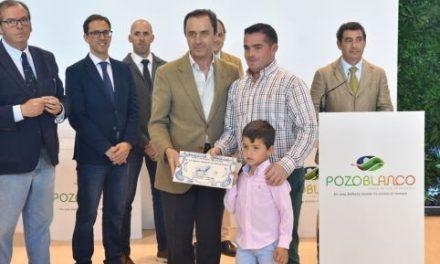 El concurso morfológico de la raza blonda de aquitania debuta en la Feria en una jornada marcada por los certámenes de ganado