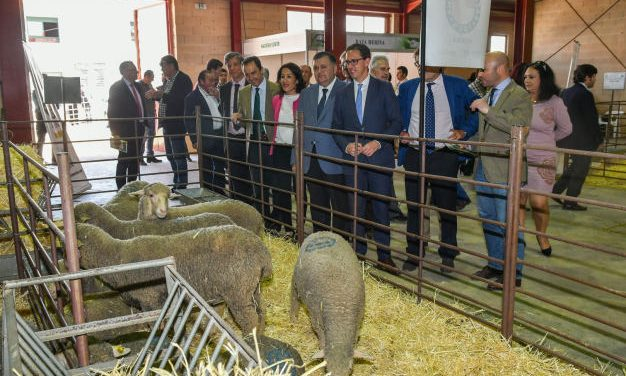 La Feria Agroganadera de Los Pedroches arranca con previsiones muy optimistas del sector tras las lluvias de las últimas semanas