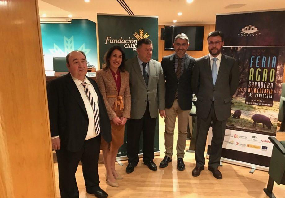 La XXV Feria Agroganadera y XV Agroalimentaria de Los Pedroches contará con una exposición de 1.200 cabezas de ganado