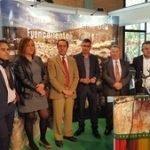 La subasta del ovino de la raza Merina se salda con un remate de 31.831 euros
