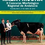 Ganadores de los concursos del blog del II Regional de Andalucía de Raza Frisona